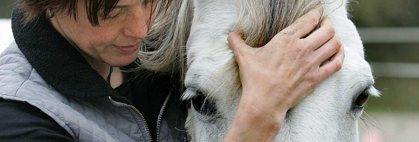 Pferdeosteopathie Ostfriesland